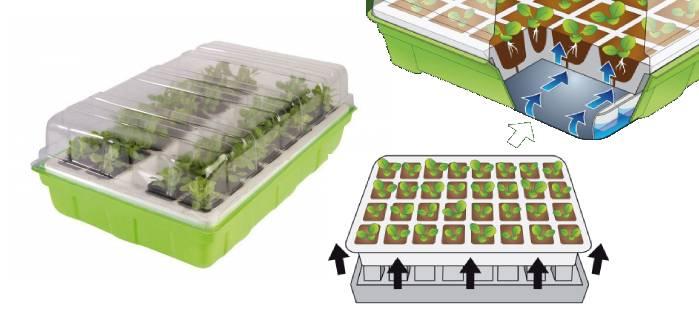 Serre de germination pour semis
