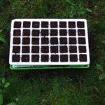 Remplir les godets du kit germination de terreau
